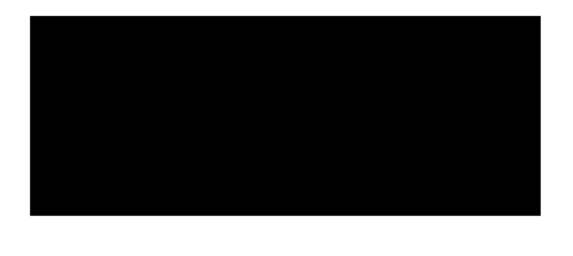 Valetissimo Logo